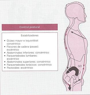control postural.estabilizadores